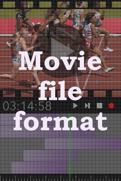 動画データファイルの種類と使い分け