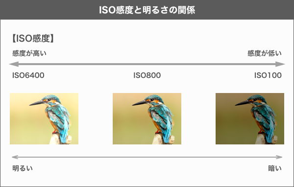 【一眼レフカメラの基本設定】ISO感度について