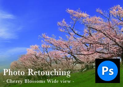 Photoshopでもっと綺麗な桜の写真を目指すレタッチとカメラワーク(広角・ワイド編)